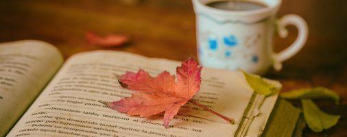 Những câu nói hay và ý nghĩa nhất về sách