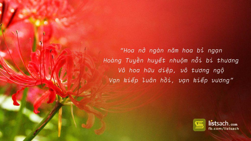Những bài thơ về hoa bỉ ngạn buồn xé lòng