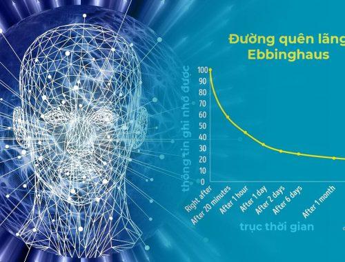 Rèn luyện trí nhớ - cách ghi nhớ hiệu quả ebbinghaus