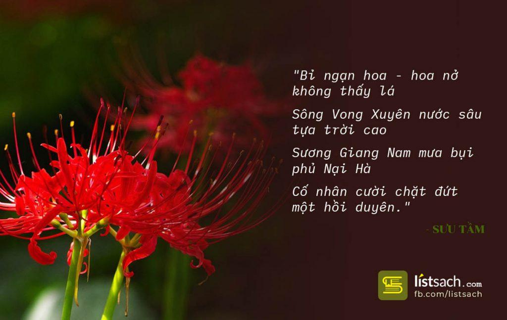 Bài thơ buồn hoa Bỉ ngạn