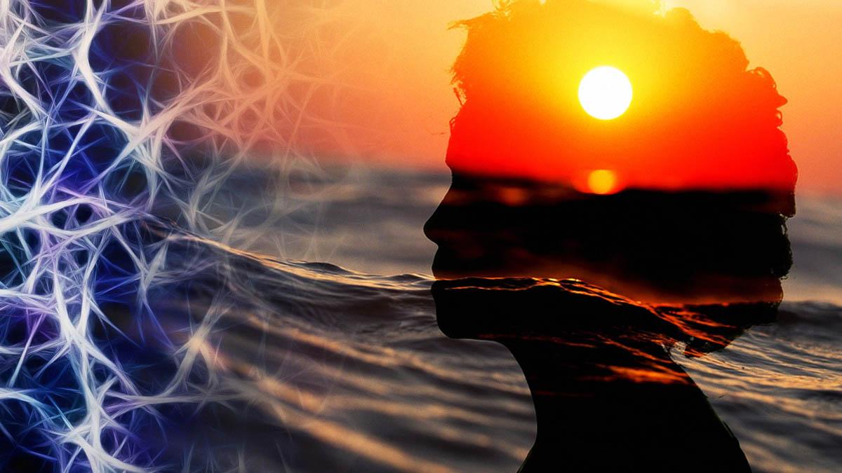 Tâm lý học hành vi - top thủ thuật, bí mật về tâm lý