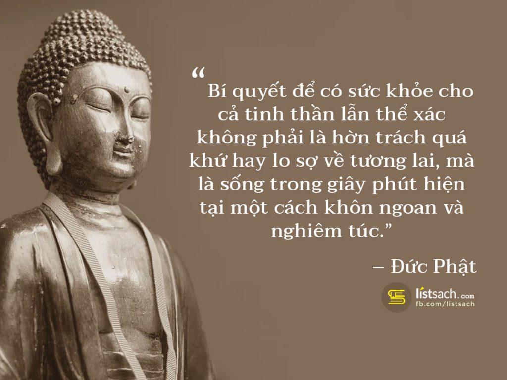 Câu nói hay, lời dạy của Đức Phật về tình yêu và hận thù
