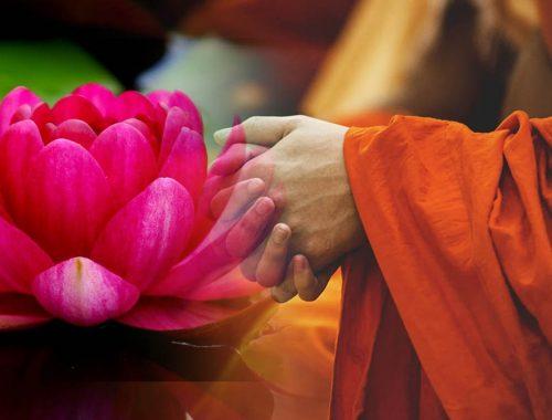 Top những câu nói hay của Đức Phật, lời phật dạy về cuộc sống