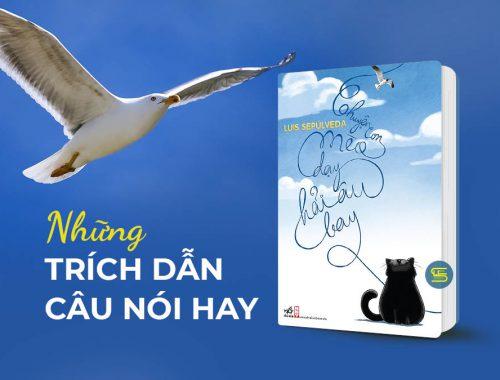 Review trích dẫn hay sách Chuyện con mèo dạy hải âu bay