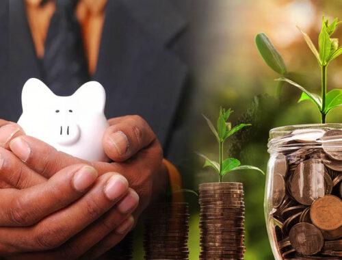 Lãi suất kép là gì? Sức mạnh và cách tính lãi kép trong đầu tư